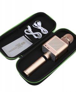 newplay karaokemikrofon Q10s