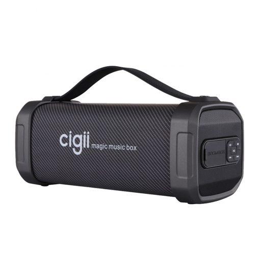 Newplay Bluetooth högtalare Cigii F62D