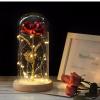 Newplay ros i metall med glaskupa och belysning guld röd