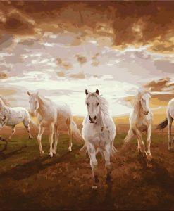 Newplay tavla måla efter nummer akryl 5 st hästar