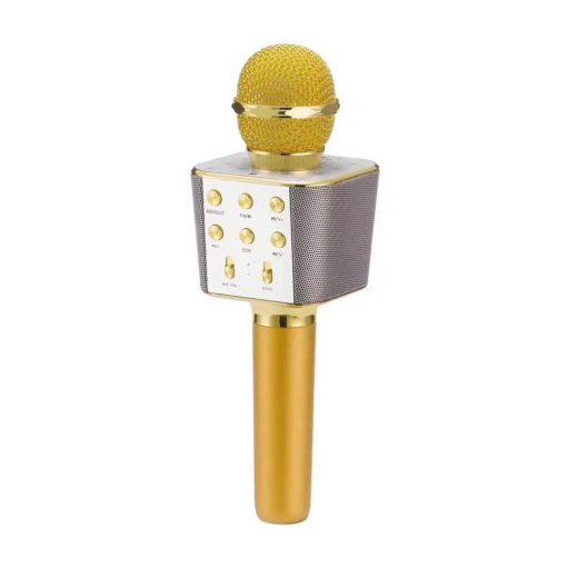 newplay ws-1688 karaoke mikrofon bluetooth guld